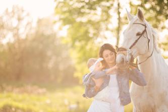 sesja z koniem
