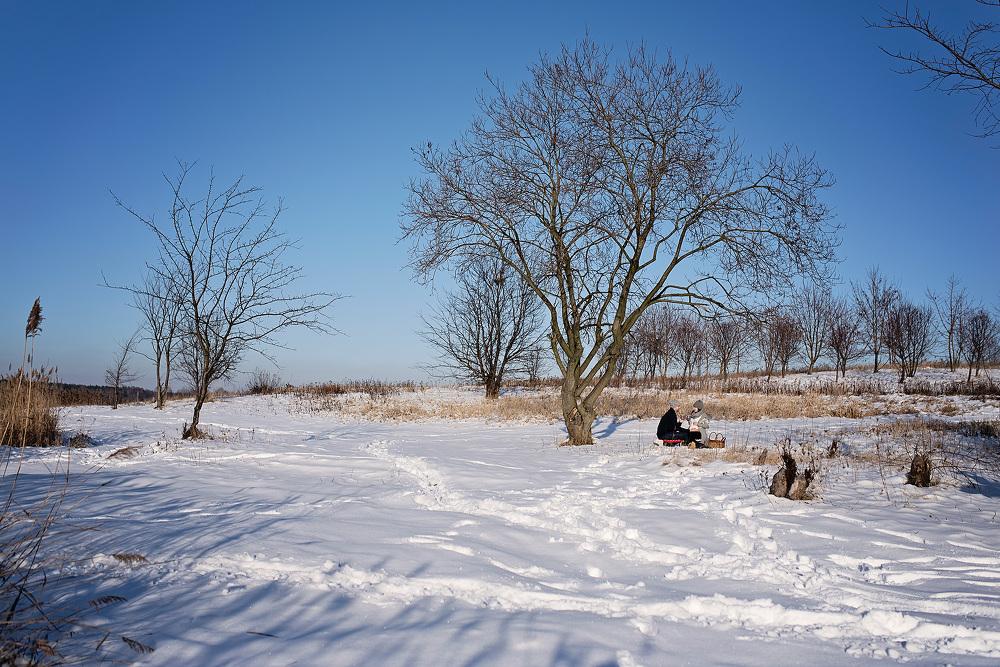 zimowa sesja ciązowa